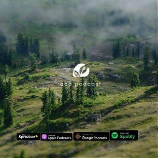 Ep.07 | Ecopodcast - Intelligenza ecologica