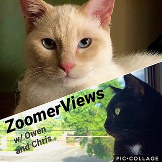 ZoomerViews Podcast