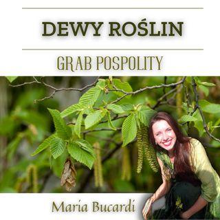 Dewy Roślin - Grab Pospolity - chroniczne zmęczenie, konsumpcja a produkcja | Maria Bucardi