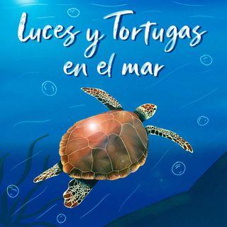 Luces y Tortugas en el Mar