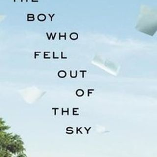 Dornstein: The Boy Who Fell Out of the Sky: A True Story
