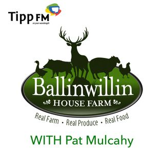Pat Mulcahy as a Mindful Peaceful Farmer