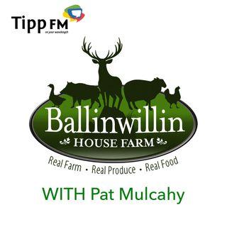 Pat Mulcahy as a Mindful Peaceful Farmer