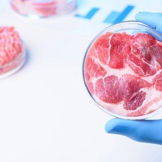 Carne artificial: ¿Alimento del futuro?