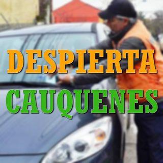 #DespiertaCauquenes: El regreso de los parquímetros y los viajes de Concejales