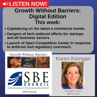 Growth Without Barriers - DIGITAL EDITION: Online & e-commerce trends, dangers of tech anti-trust efforts.