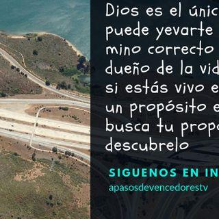 Dios Es Bueno (Apasos De Vencedores - El show de Miguel Guerrero