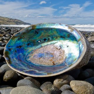 Abalone Meaning Benefits and Spiritual Properties