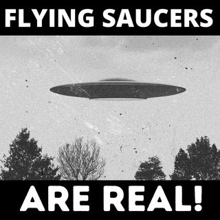 Chapter 19 - The Flying Saucers Are Real
