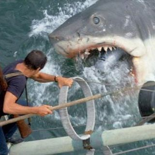 #22: Jaws