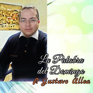 HOMILIA DOMINGO XVI Tiempo Ordinario Ciclo A