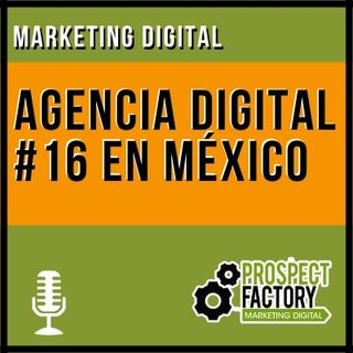 Agencia Digital 16 en México | Prospect Factory