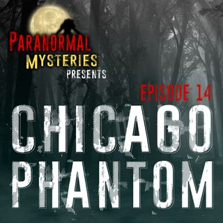 Chicago Phantom: Mothman Sightings Continue