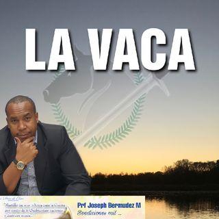 Episodio 4 - 3 Minutos Con Joseph Bermudez - LA VACA