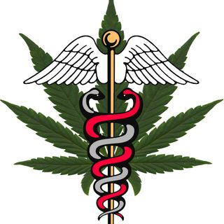 Cannabis Patients Out Of Time - 10-12-16
