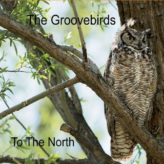 Ep 30 - The Groovebirds