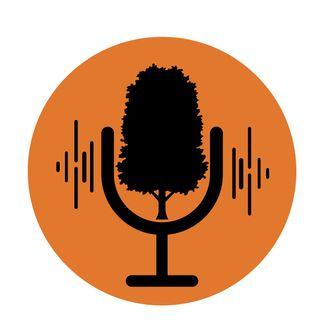 Podcast Sabina Mora