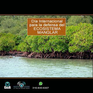 NUESTRO OXÍGENO Día Internacional por la defensa de los manglares