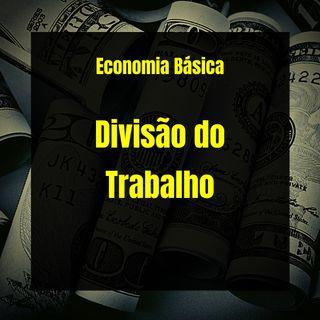 Economia Básica - Divisão do Trabalho - 20