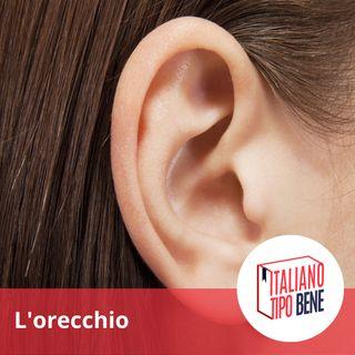 #6 - L'orecchio