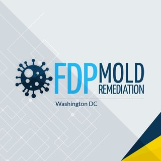 FDP Mold Remediation services in Washington, DC