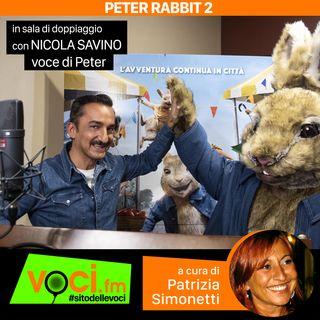 """Nicola Savino voce in """"Peter Rabbit 2: Un birbante in fuga"""" su VOCI.fm - clicca PLAY e ascolta lo speciale"""