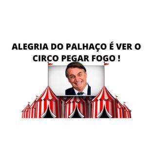 Bolsonaro agora é o palhaço de um circo em chamas