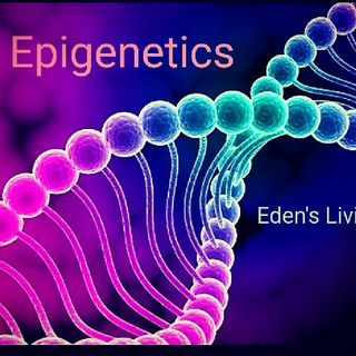 Epigenetics * EDEN'S LIVING * CHRISTIAN MIX 106