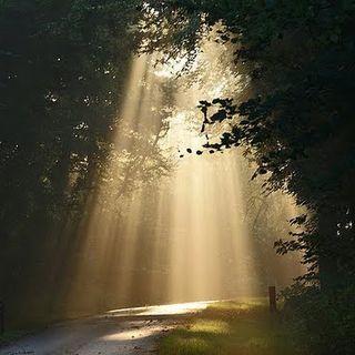 Light on Darkness