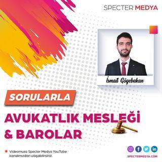 Sorularla  Avukatlık Mesleği ve Barolar  Specter Medya