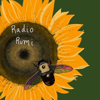 RadioRumi Program 30: Without Your 'Self' You'll See better Where you are Going!