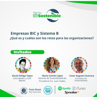 Empresas BIC o Sistema B