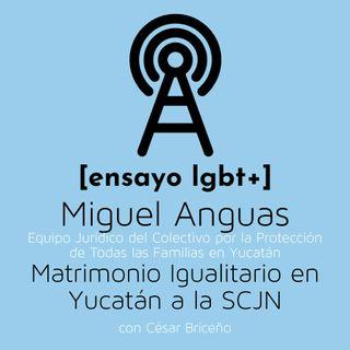 Matrimonio Igualitario en Yucatán a la SCJN - [ensayo lgbt+]