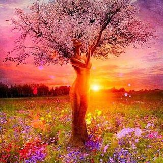 Buongiorno ✨💖🌸 in connessione alla Madre Terra e ad ogni essere vivente!