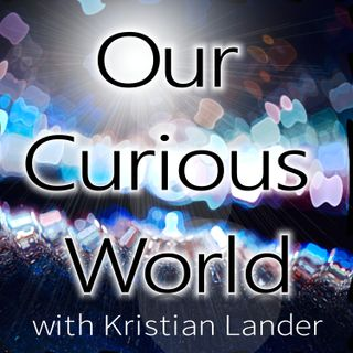 Beatrice Flowers | Our Curious World with Kristian Lander -