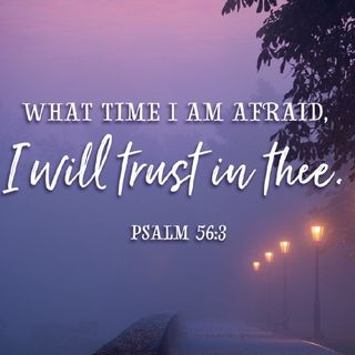Fear Time - Morning Manna #3301