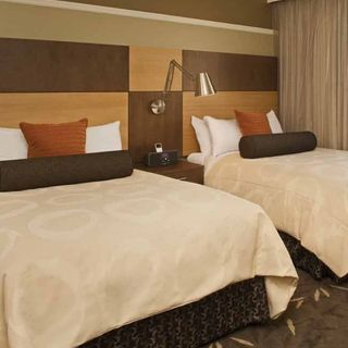hotel industry history and its future