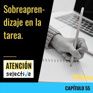 CAPÍTULO 55 - Sobreaprendizaje en la tarea