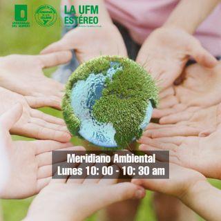 Meridiano Ambiental -  Noviembre 30 de 2020