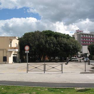 A Senigallia è iniziato l'abbattimento di 68 alberi
