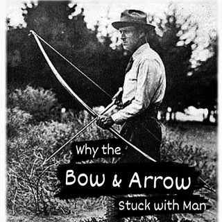 How the bow and arrow stuck with man
