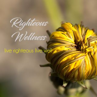 Righteous Wellness E6 Mind Transformation