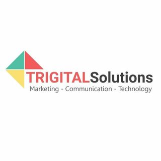 SEO Agency in Delhi - Trigital Solutions