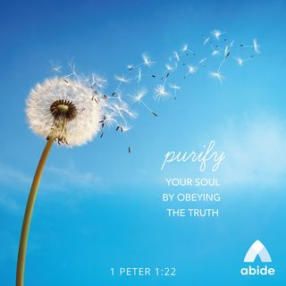 Purity of the Soul