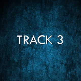 Track 3