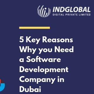 5 Key reasons to Choose Software Company in Duabi