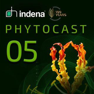 Phytocast 05: Sustainability