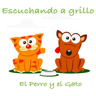 02 El Perro y el Gato