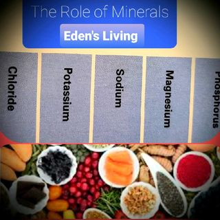 MINERALS & Their ROLE IN HEALTH