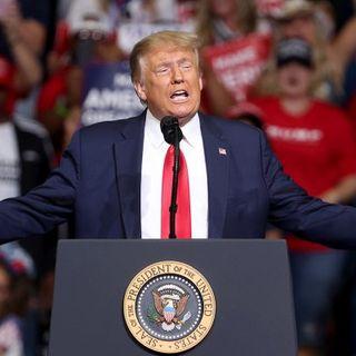 Usa 2020: Donald Trump ipotizza il rinvio delle elezioni